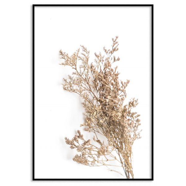 Simple dry botanical plant poster