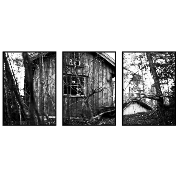 Abandoned House in the Swedish Forest - Three Piece Poster