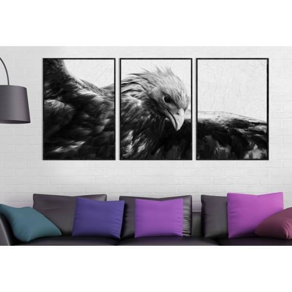 Eagle - Three Piece Poster