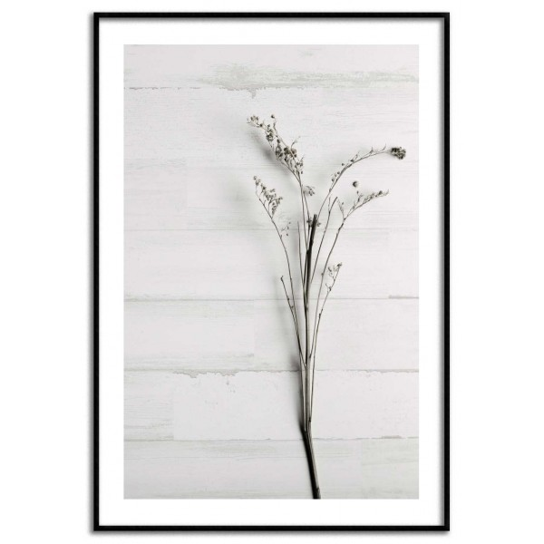 Simple botanical plant poster