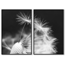 Abstract dandelion - Two piece black & white poster