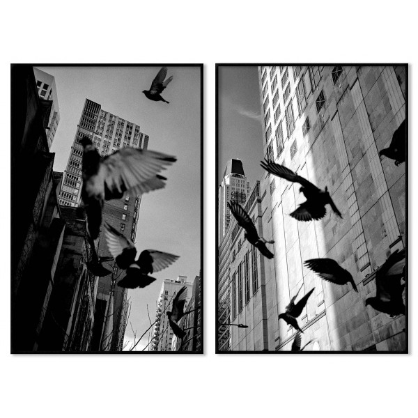 City and birds - Black and white poster