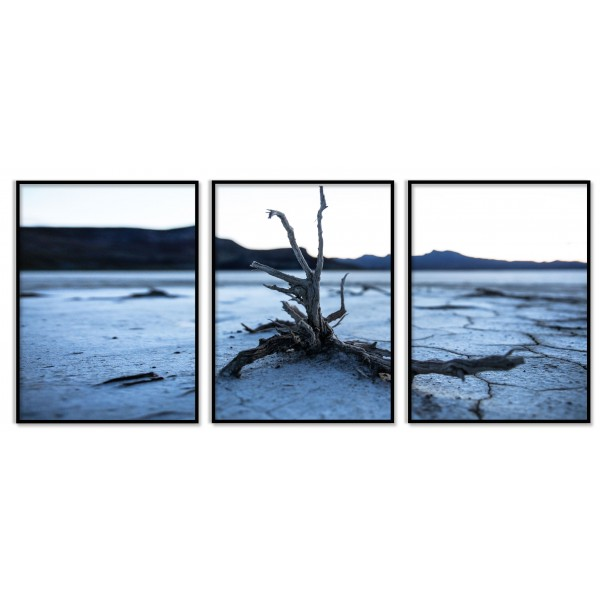 Light Blue Poster with Dead Tree - Three Pieces