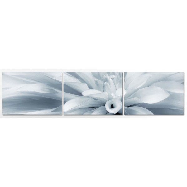 White Flower - Poster in Three Pieces